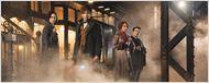 Fantastic Beasts'in Devam Filmleri de David Yates'e Emanet!